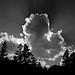 Shadow Standing:  Eastern Sierra Nevada by Ivan Sohrakoff