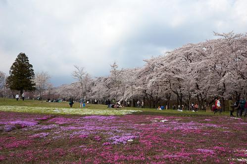 AKG_2012-04-19_012