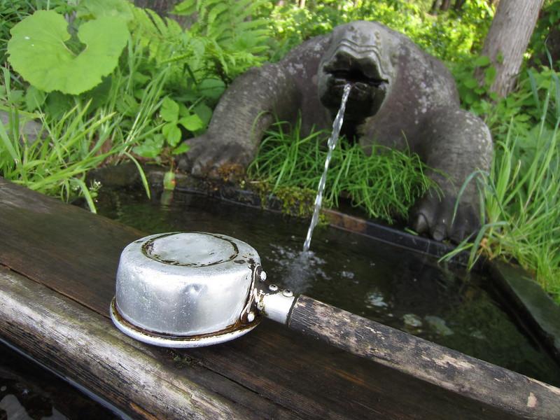 20130525亀の子の水