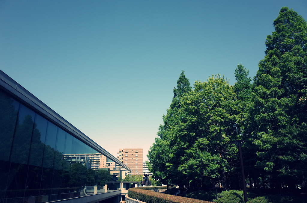 Tokyo GR Walking