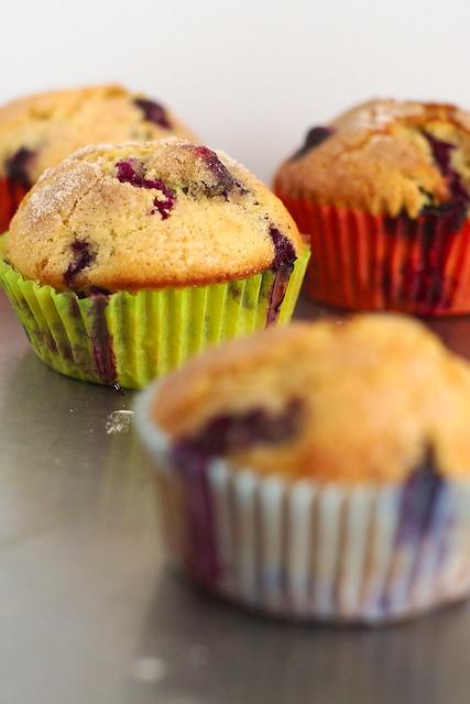 Muffin ai Mirtilli neri