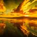 reflection sunset at waikanae beach by MAKE IT LOOKING COOL