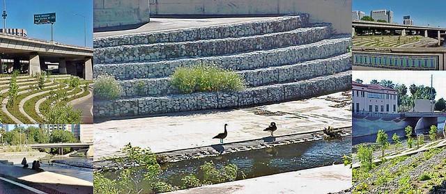 geese, vegetation, and more, Guadalupe River Park at W Santa Clara Street, San Jose, California, May 21, 2005
