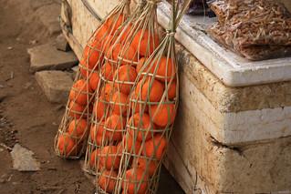 caged oranges