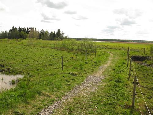 finland nationalpark europe fin フィンランド kokemäki 芬兰 puurijärvi isosuo äetsä