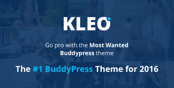KLEO v4.1.8 - Next level WordPress Theme