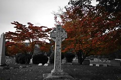 Old Tennent Cemetery and Church (Est. 1731)
