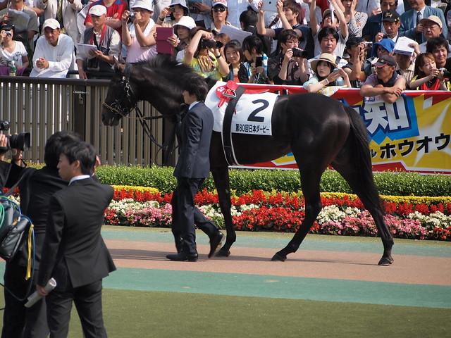 Photo:Codino By nakashi