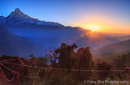 travel nepal mountain color beautiful beauty horizontal sunrise trek landscape dawn twilight scenery colorful asia view outdoor scenic peak rhododendron stunning vista himalaya annapurna himalayas breathtaking tadapani gandaki kaski machapuchare