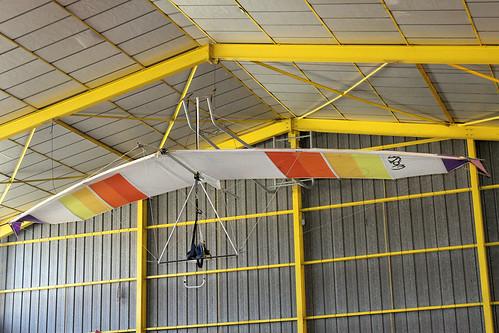 Wasp Hang Glider