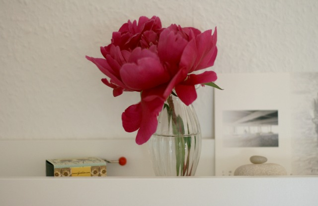 Pfingstrosenliebe im Juni für #2flowergirls 03