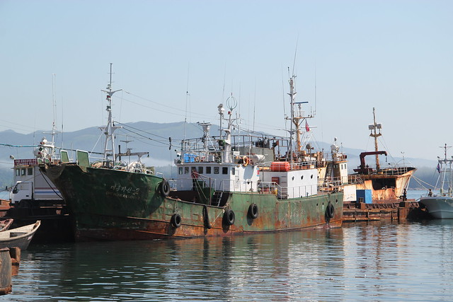 Fishing Boats Seafood Processing Factory Rason North Korea