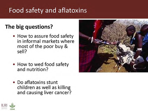 Food safety and aflatoxins