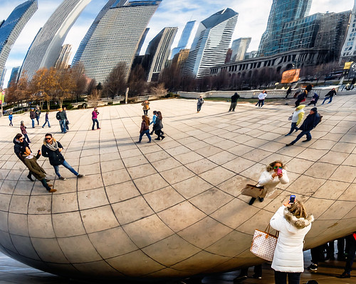 Photographing the Bean