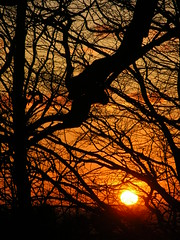 Downland Sunset 2