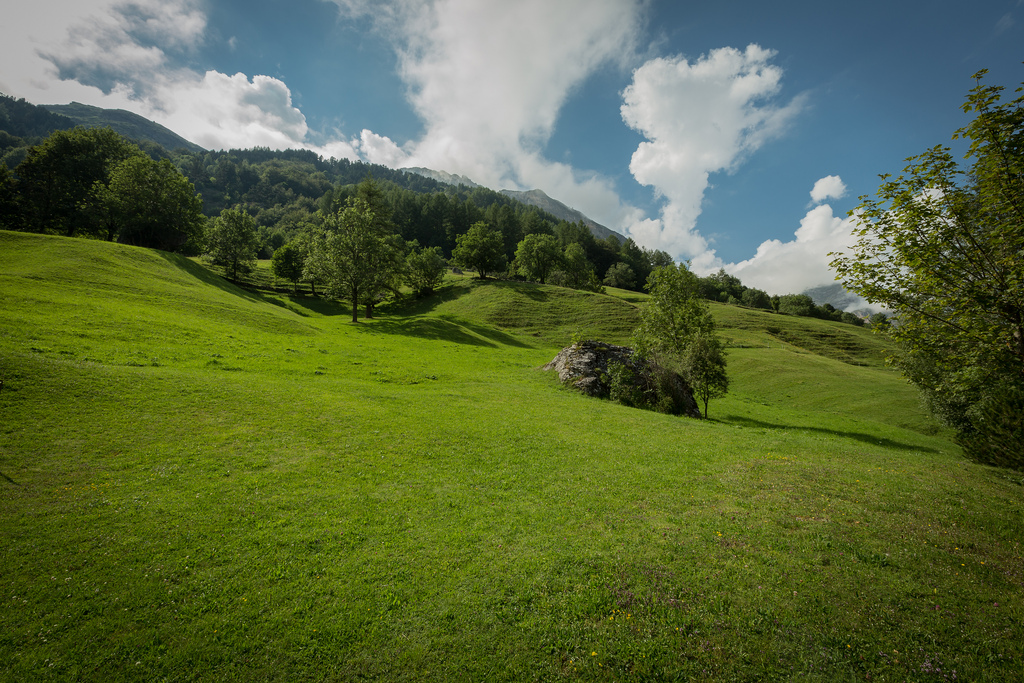 4. Pastos de verano junto al pueblo. Autor, Paulo Valdivieso