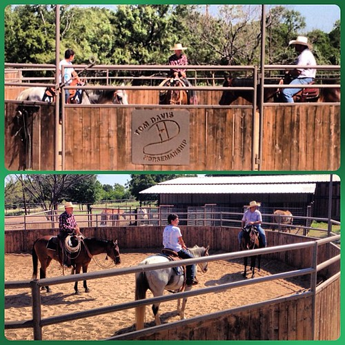 Lessons and clinics - private or groups at TnT Ranch! #tomdavis #horsemanship #horses #clinics #lessons #tntranch #learning #riding