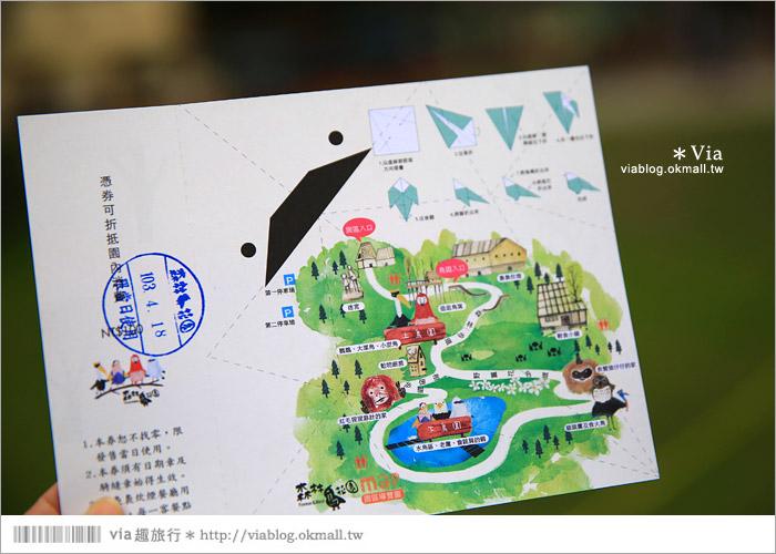 【新竹景點推薦】森林鳥花園~親子旅遊的好去處!在森林裡鳥兒與孩子們的樂園8