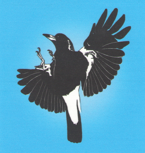 Magpies On The Fly Coffee Shop - 10 Photos - Cupcakes ...