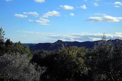 Le roc de Sampzon à l'horizon