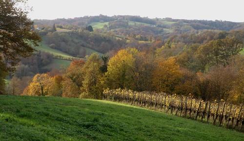 Entre Lasseube et Lasseubetat, Béarn, Pyrénées Atlantiques, Aquitaine.