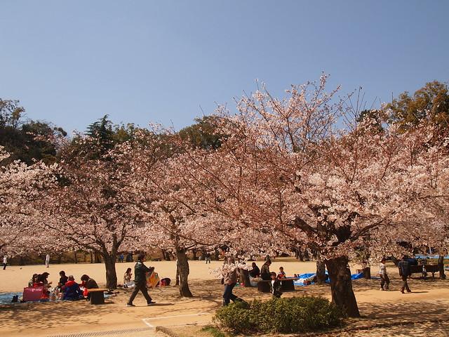 In Dougo Park3