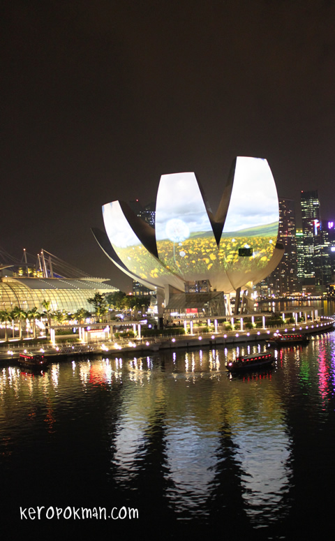 iLight Marina Bay 2012