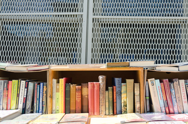 Outdoor Bookshelf