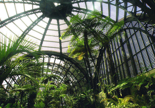 Roof Inside the Botanical Building