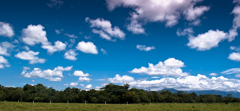 paisajes llaneros