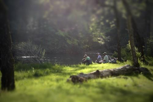 Paflyfish blog for Spring creek pa fishing report