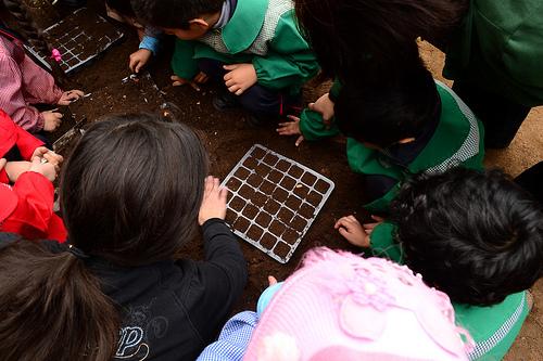 Actividad Más Ciencia para Chile en Valparaíso.