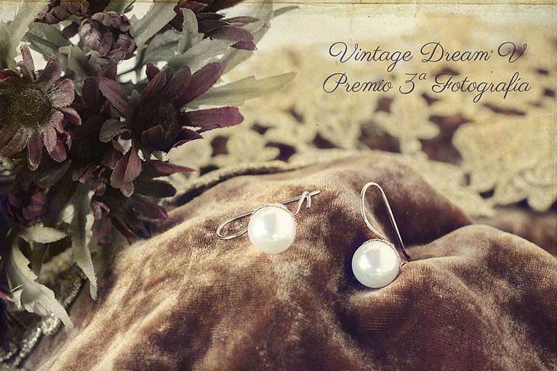 Vintage Dream V- Tercer Premio