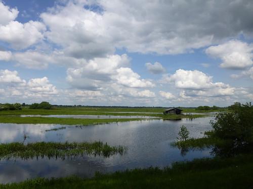 cloud nature landscape bremen wümmewiesen