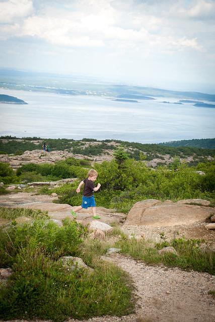 Acadia4 (1 of 1)