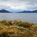 Orcas Island, Washington by yoelcita