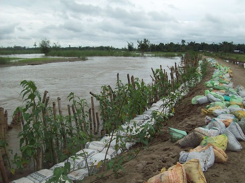 Channels shift so abruptly in Dhemaji that the entire district can be considered a flood plain of a river. Bunds are being used as a flood protection measure here through support of Rural Volunteers Centre and NREGA programmes.