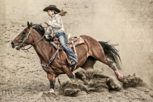 Gooseberry Lake : 4-H Rodeo 2013 : Turning Wide