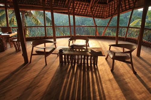 Bambus House v11