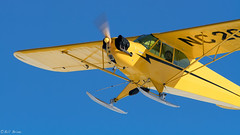 monoplane, aviation, airplane, propeller driven aircraft, yellow, wing, vehicle, piper pa-18, piper j-3 cub, propeller, flight, ultralight aviation, aircraft engine,