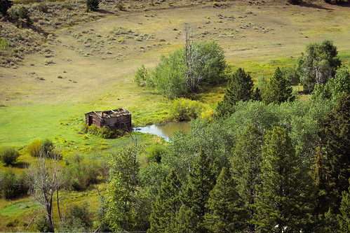 trees color green water barn rural canon landscape montana looking view down evergreen hog oldbarn catchycolorgreen 60d