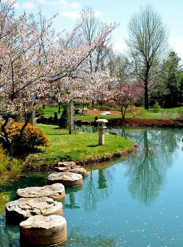 park japanesegarden parks springfieldmissouri 2014 springfieldmo japanesestrollgarden mizumotojapanesestrollgarden