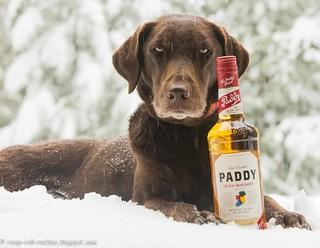 Medicine for 3' of Snow in April