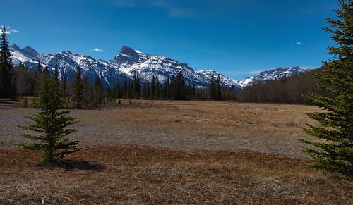 mountains pentax alberta rockymountains grasslands albertabound davidthompsonhighway canadianrockies kootenayplains cans2s siffleurwildernessarea