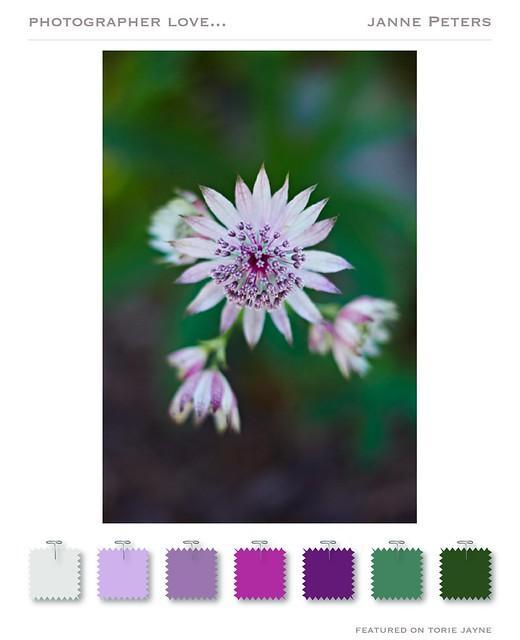 Pretty Gardening from Janne Petersfrom Janne Peters 4-01