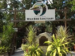 The Laura Quinn Wild Bird Sanctuary