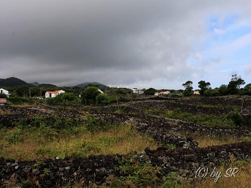 Azores2014_0526