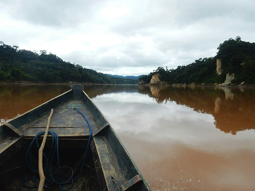 Boat to Madidi National Park - Amazon forest - Bolivia
