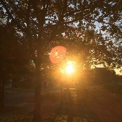 30 November 2016 #sunset #samespotforayear #vso #vsocam #nofilter