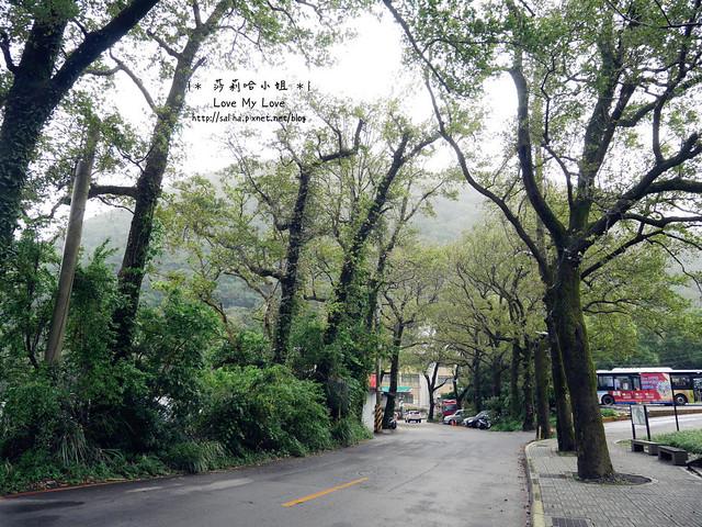 陽明山一日遊景點推薦前山公園 (48)